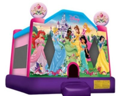 Disney Princess Bounce House 13x14